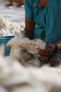 Cleaning wool for handmade rug making